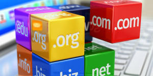 Intellectual Property and Domain Names